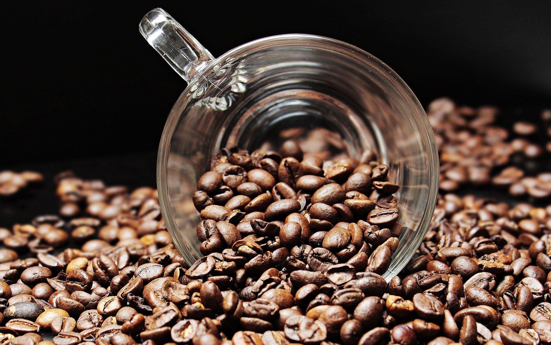kahvenin işlenmesi
