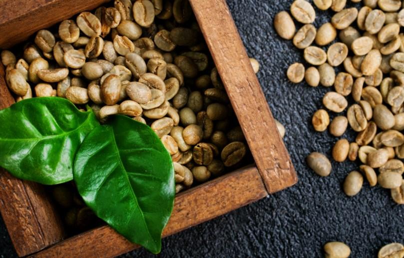 yeşil kahve çekirdekleri